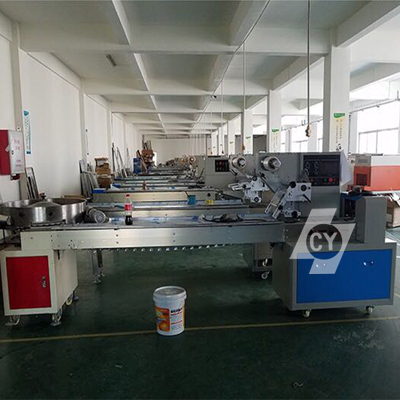 ChenYuan professional wrapping machine series for noodles-4